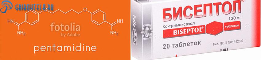 Бисептол и Пентамидин основные средства для лечения пневмоцистоза
