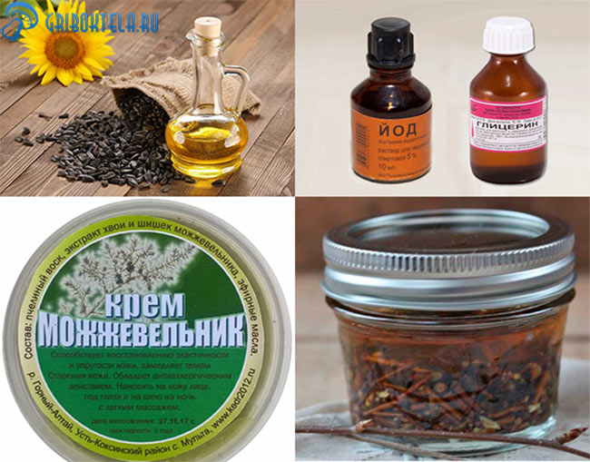Народные средства при лечении Фавуса